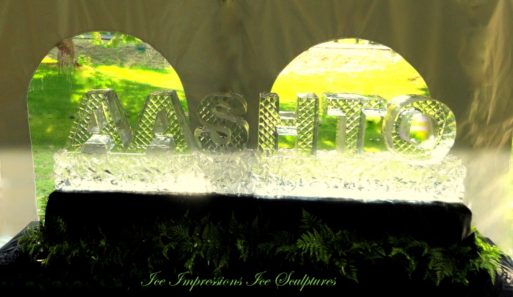 AASHTO ICE SCULPTURE, Custom Hand Sculpted Letters, Ice Sculpture, Ice Sculptures, Ice Carving. Ice Carvings, Northern Michigan Ice Sculptures, Clear Ice, Ice Impressions, Ice Impressions Ice Sculptures, Michigan Ice Sculptures, Michigan Ice Sculpture, Michigan Ice, Michigan Ice Carving, Michigan Ice Carvings, Great Lake State, Pure Michigan, Ice Sculptures Northern Michigan.
