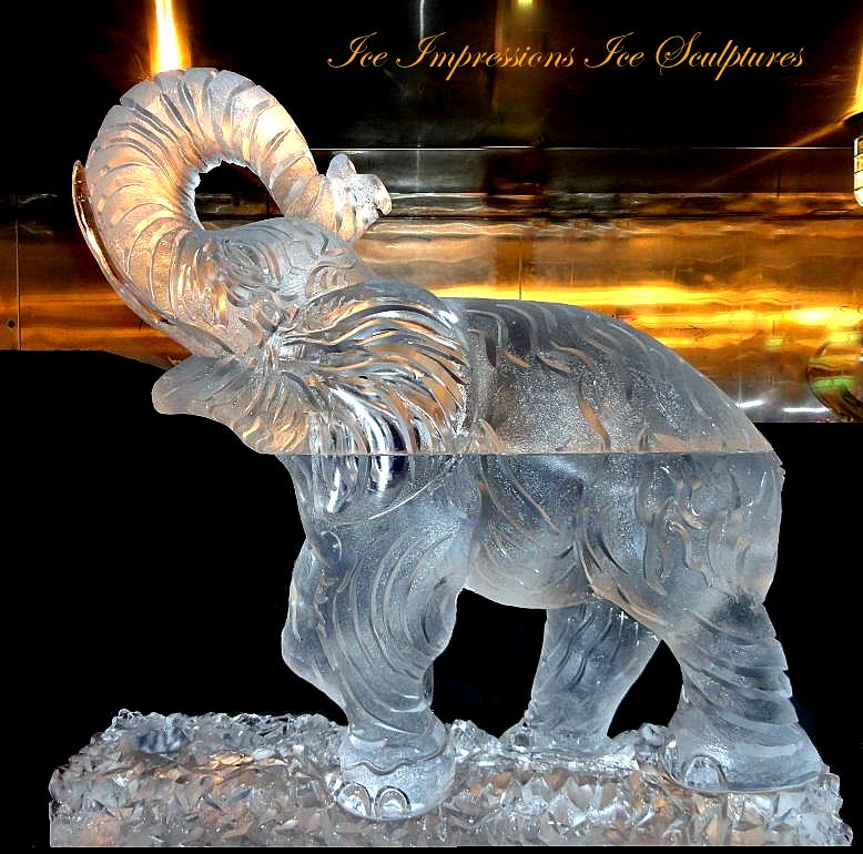 elephant ice sculpture, elephant trunk, elephant, elephant ice art, ice sculptures, ice sculpture