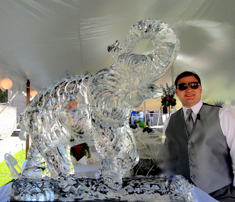 elephant ice sculpture, elephant ice carving, elephant sculpture, elephant carving, elephant, baby elephant