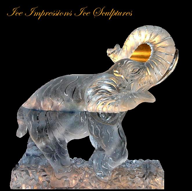 Elephant Ice Sculpture, ice sculpture, michigan ice sculpture, animal ice sculptures, ice impressions ice sculptures, elephant with trunk raised