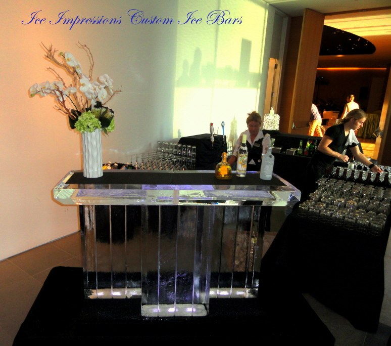 Wedding Ice Bar, Ice Bars for Weddings, Ice Bar, Michigan Ice, Michigan Ice Bar, Ice Impressions, Ice Bars Michigan, Wedding Decor Ice Bars, Ice Bar, Custom Ice Bars, Grand Rapids Art Museum Wedding, Grand Rapids Ice Sculptures, Ice Impressions.